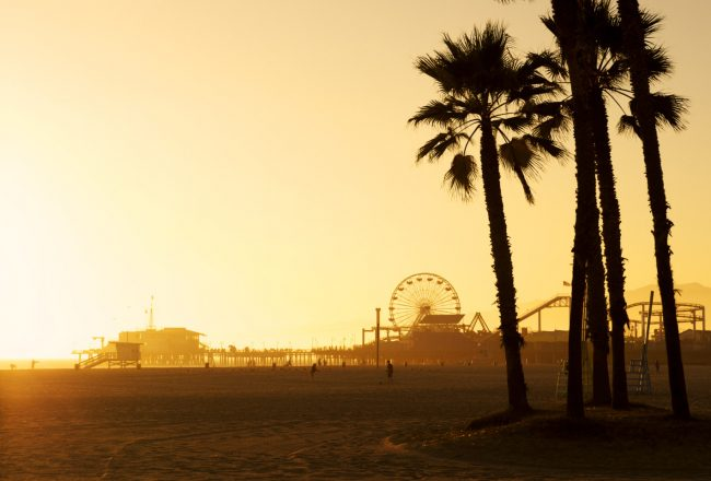 Santa Monica Pier framed by silhouetted Palm trees at dusk.